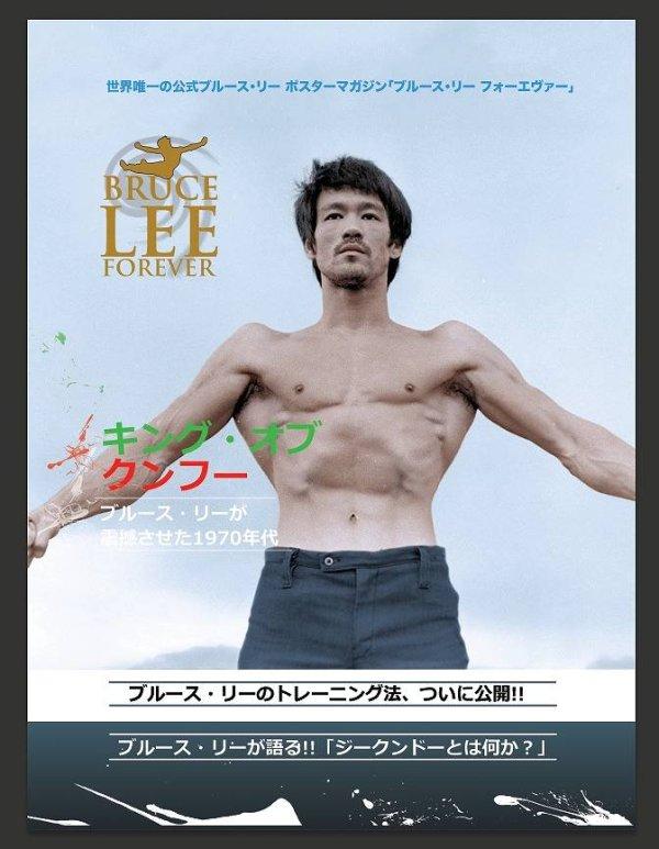 画像1: キング・オブ・クンフー【日本特別版】(イギリスポスターマガジン) (1)
